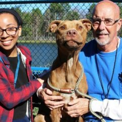 Orange County Animal Services Partners with LoveyLoaves Rescue  to Treat Shelter Dogs with Heartworm Disease