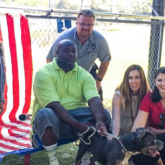 Orange County Animal Services' New Adoption Program for Veterans Proves Successful
