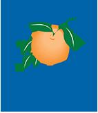 ocfl-logo