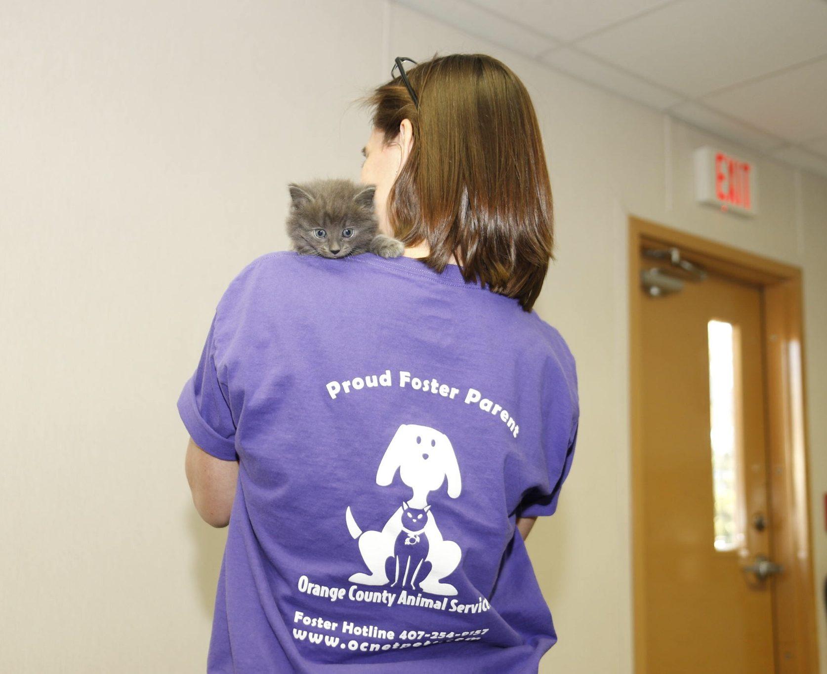 Mujer de espaldas a la cámara sosteniendo un gatito.