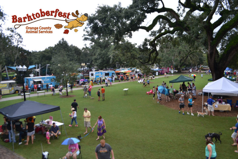People in a park with their dogs walking to meet vendors at their tents and food trucks.