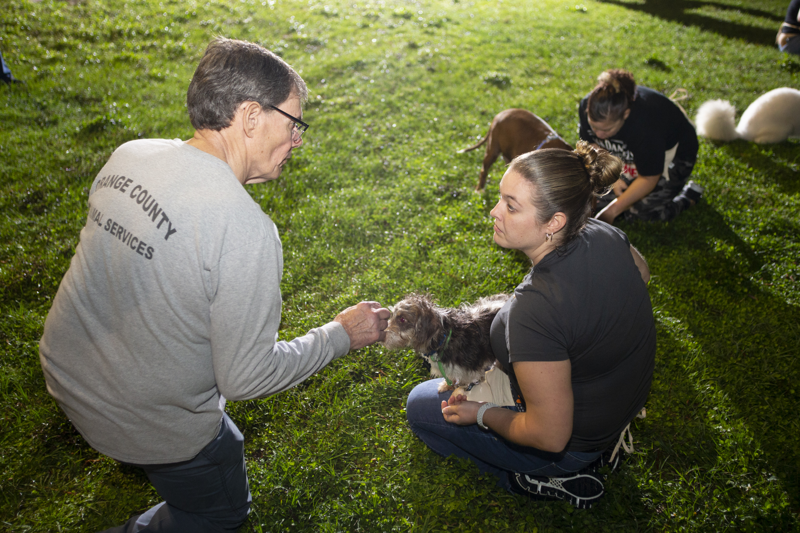Two employees interacting with a dog and chatting, while a woman in the background plays with another dog. They're outside on a grassy patch.