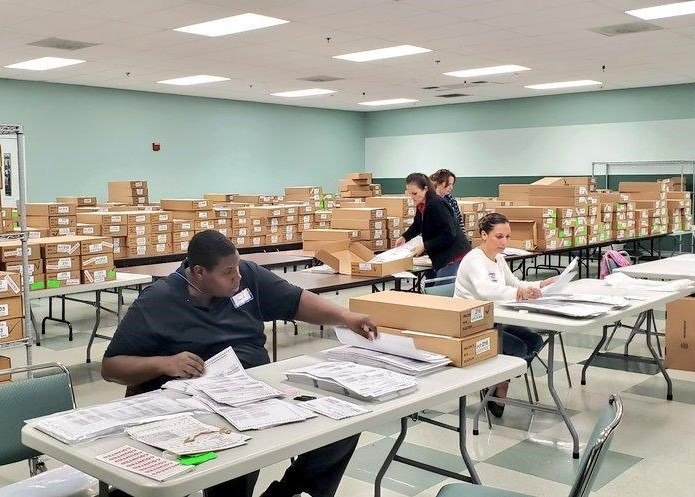 Employees sorting ballots in a large room