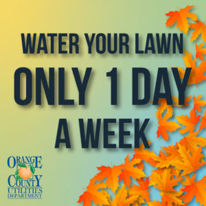 Water Your Lawn Only 1 Day a Week.