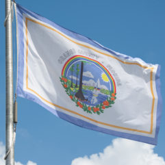 A Story Worth Flagging: The Origination of Orange County's Official Flag