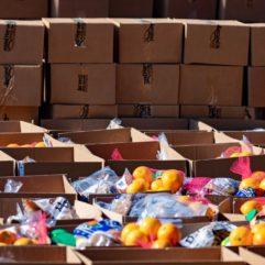 cajas llenas de donaciones de alimentos.
